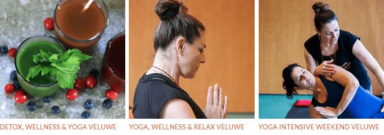 Lighthouse yoga retreats
