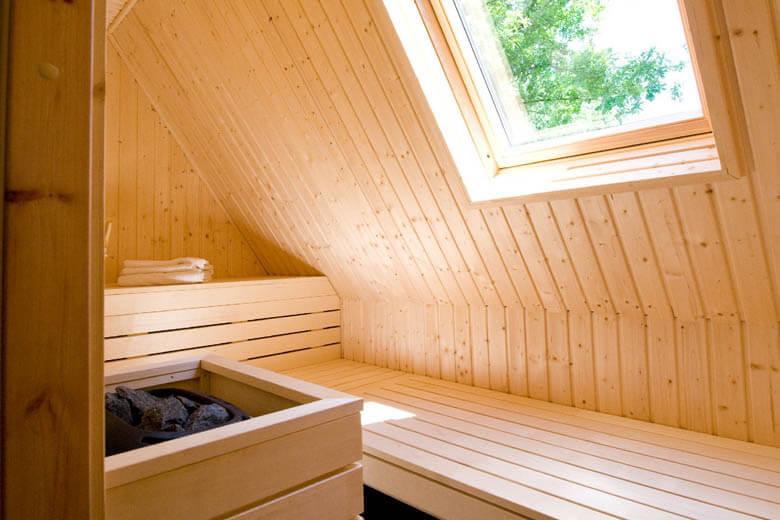 huisje met een sauna Hof van Salland