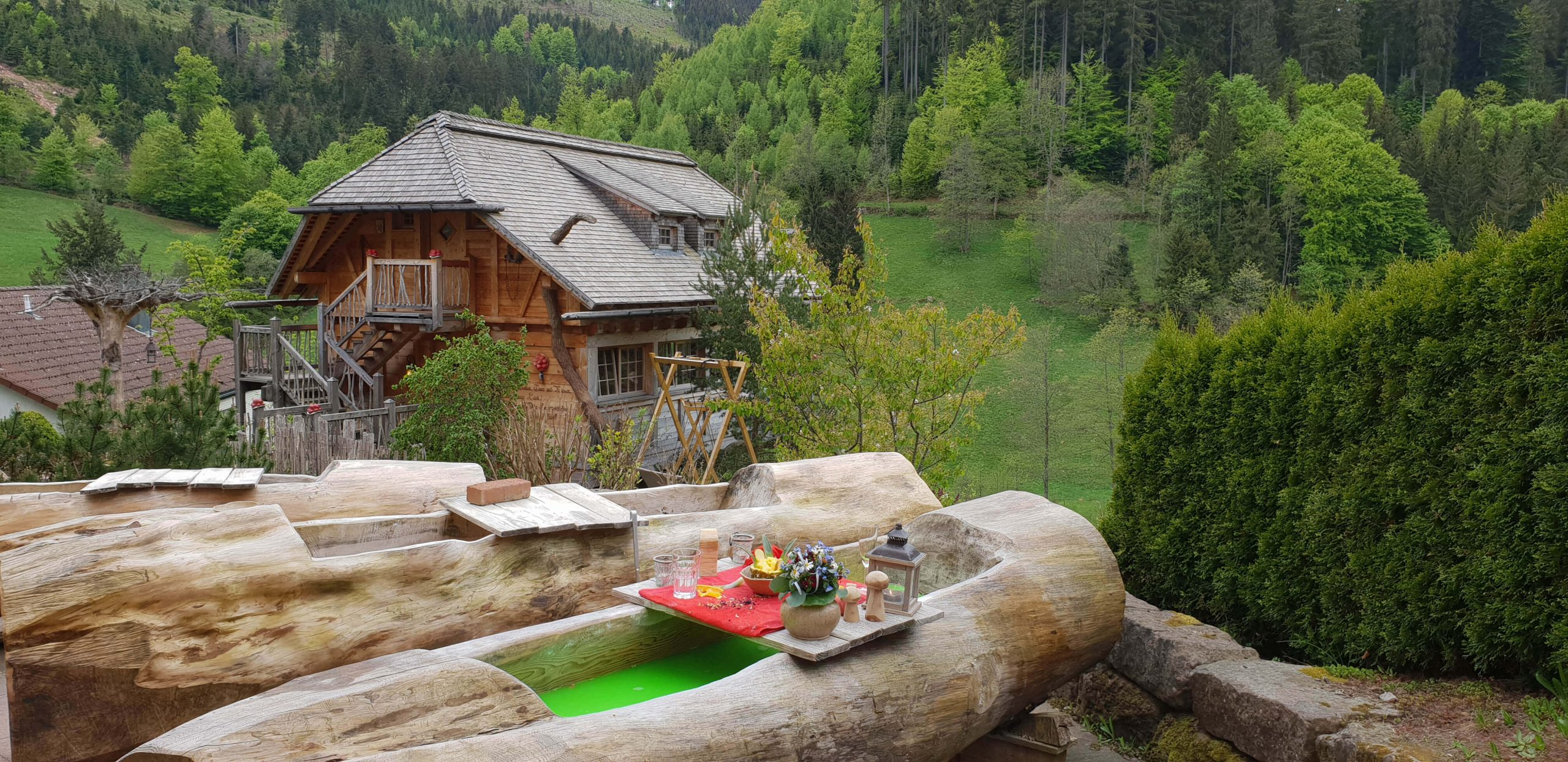 Boomhut met sauna