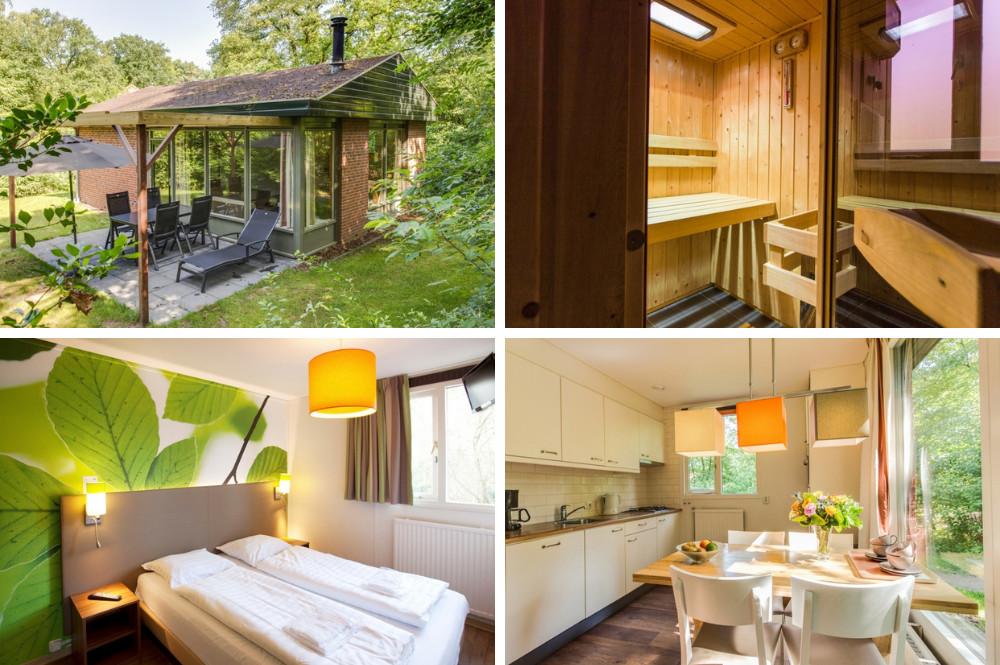 Huisje met sauna binnen - Salland