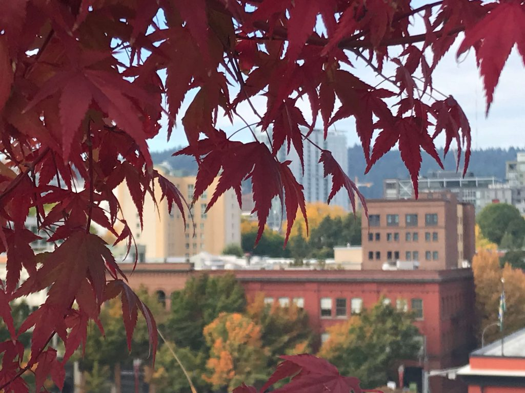 Reistips Portland's Old Town