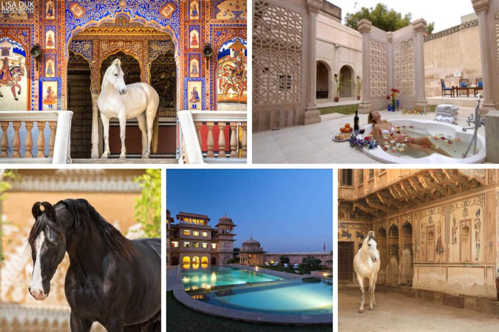 Wellness reizen en paardrijden op reis