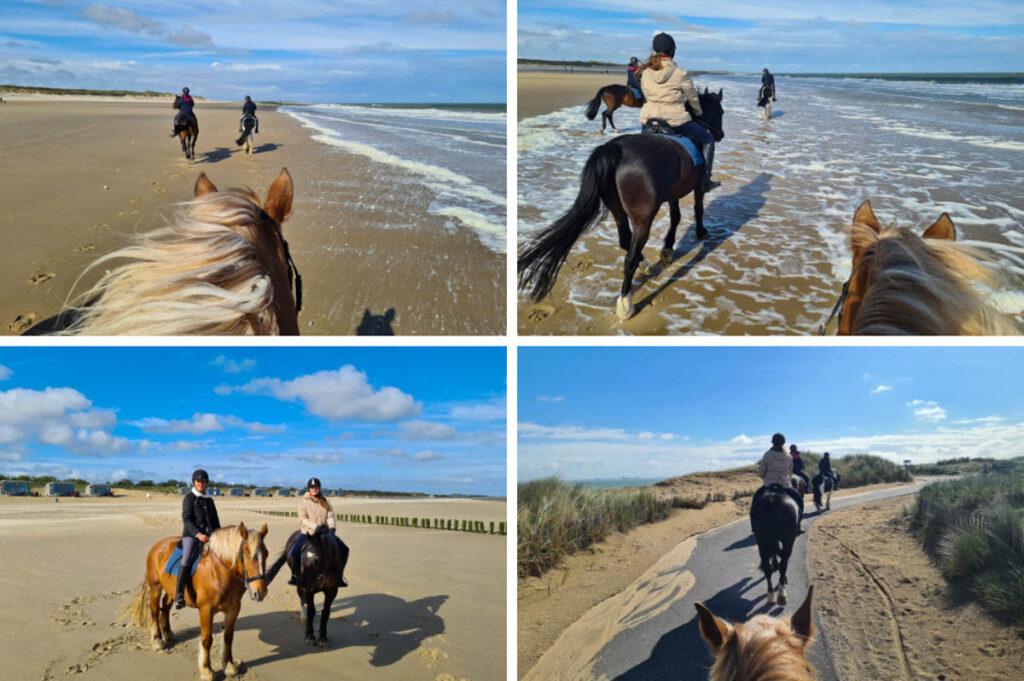 Paardrijden op het strand van Nieuwvliet-Bad