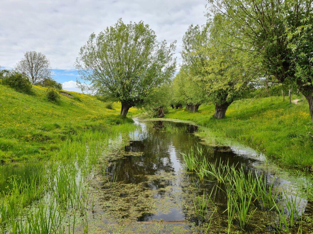 Retranchement West-Zeeuws Vlaanderen